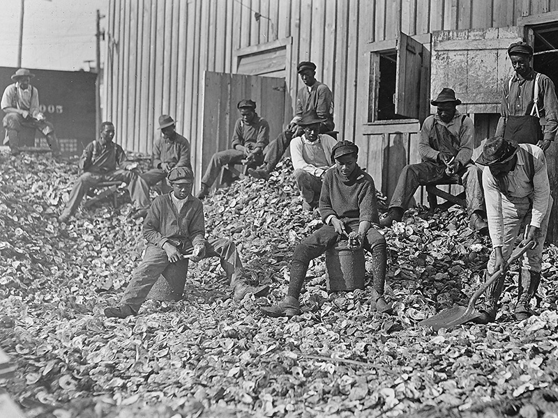 Oyster_shuckers_at_Apalachicola,_Fla._This_work_is_carried_on_by_many_young_boys_during_the_busy_seasons._This_is_a…_-_NARA_-_523162